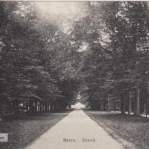 Baarn Bosch