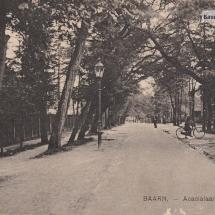 Acacialaan Baarn