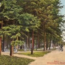 Hilversumschestraatweg1 Baarn